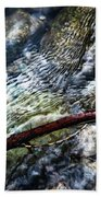 Clear Water Level With Twigs Beach Towel