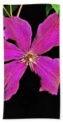 Clematis 2598 Beach Towel