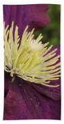 Clematis 4000 Beach Towel