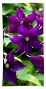 Clematis Flowers Beach Towel by Corey Ford