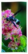 Clethra And Wasp Beach Towel