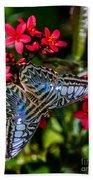 Clipper Butterfly 1 Beach Towel