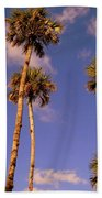 Close To The Clouds Beach Towel