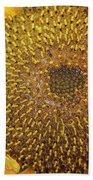 Close Up Of A Sunflower Head Beach Towel