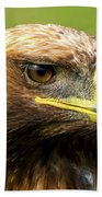 Close-up Of Golden Eagle With Turned Head Beach Towel
