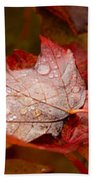 Close-up Of Raindrops On Maple Leaves Beach Towel