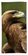 Close-up Of Sunlit Golden Eagle Looking Back Beach Towel