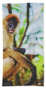 Close-up Portrait Of A Nicaraguan Spider Monkey Sitting And Looking At The Camera Beach Towel