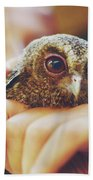 Closeup Portrait Of A Girl Holding And Tending A Small Baby Owl In Her Hands Beach Towel