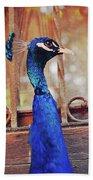 Closeup Portrait Of A Peacock Peafowl Beach Towel