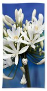 Closeup White Californian Flower Beach Towel