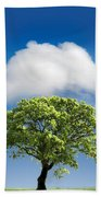 Cloud Cover Beach Towel