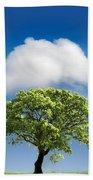 Cloud Cover Beach Sheet
