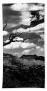 Clouds And A Tree Baw Beach Towel