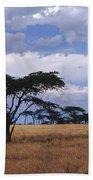 Clouds Over The Masai Mara Beach Sheet