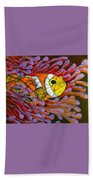 Clownfish I  Beach Towel