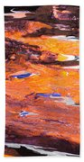 Clownfish Beach Towel