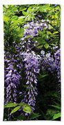 Clusters Of Wisteria Beach Towel
