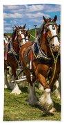 Budweiser Clydesdale Horses Beach Towel by Robert L Jackson