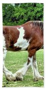 Clydesdale Beach Towel