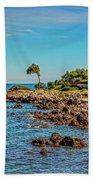 Coast At Antibes France Dsc02221 Beach Towel