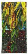 Coat Of Many Colors Beach Towel
