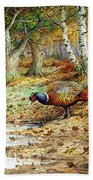 Cock Pheasant And Sulphur Tuft Fungi Beach Towel by Carl Donner