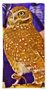 Coco The Burrowing Owl In Living Desert Zoo And Gardens In Palm Desert-california Beach Towel