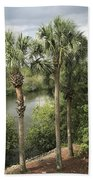 Cocohatchee River  Beach Towel