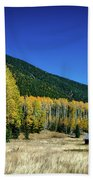 Coconino National Forest Beach Towel
