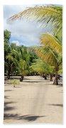 Coconut Beach Beach Towel