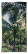 Coconut Farm Beach Towel