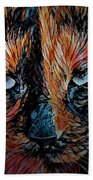 Coconut The Feral Cat Beach Towel
