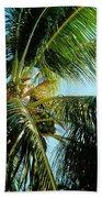Coconut Tree Beach Sheet