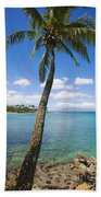 Coconut Tree Beach Towel