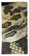 Coiled Rattlesnake Beach Towel