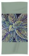 Coleus Leaves Beach Towel