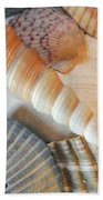 Collection Of Shells Beach Towel