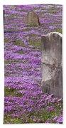 Colonial Tombstones Amidst Graveyard Phlox Beach Towel by John Stephens