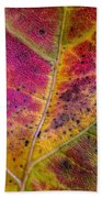 Color And Texture Beach Towel