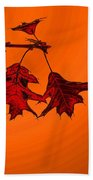 Color Me Autumn 2 Beach Towel