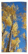 Colorado Aspen Beach Towel