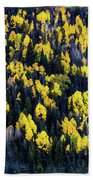 Colorado Autumn #5 Beach Towel