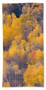 Colorado Autumn Trees Beach Sheet