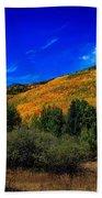 Colorado Beauty Beach Sheet