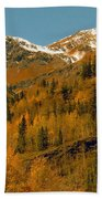Colorado Beach Towel