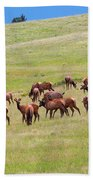 Colorado Elk Herd Beach Towel