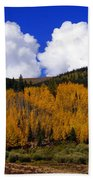 Colorado Fall 2 Beach Towel