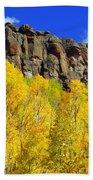 Colorado Fall 3 Beach Towel