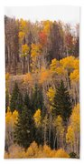 Colorado Fall Foliage Beach Towel